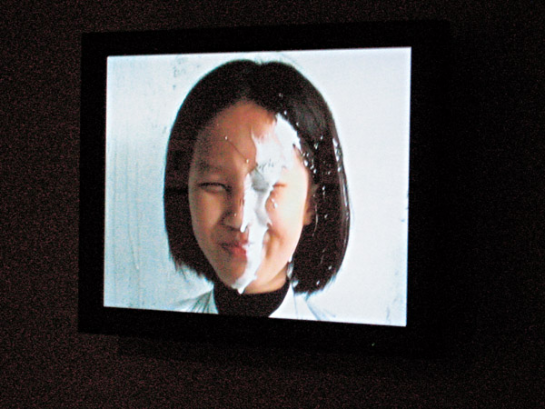 ABOUT SQUIRTING MILK AND WHITE HANDBAGS:  IMPRESSIONS OF DOCUMENTA