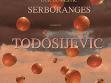 Raša Todosijević, Gott liebt die Serben (Bůh miluje Srby), Graz, Rakousko, 1993, instalace