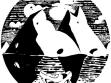 Konstantin Goreckij, Série 36 etud kulatým štětcem # 6, 1996–97, tempera na kartonu, 100x100 cm