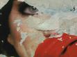 Dead Citizens,  2011-2012 by Juliana Borinski